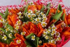 Mazzo romanzesco del fiore Fotografie Stock