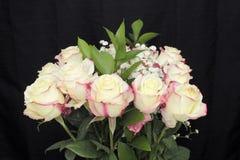 Mazzo rosa bianco panna delle rose Immagini Stock