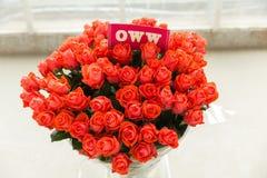 Mazzo rosa del oww rosso Fotografia Stock Libera da Diritti