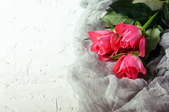 Mazzo rosa delle rose sopra fondo bianco Vista superiore con lo spazio della copia Fotografia Stock Libera da Diritti