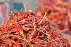 Mazzo rosso dei peperoncini rossi Fotografia Stock Libera da Diritti