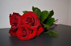 Mazzo rosso delle rose Fotografie Stock