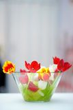 Mazzo rosso ed arancio luminoso del tulipano Fotografia Stock Libera da Diritti