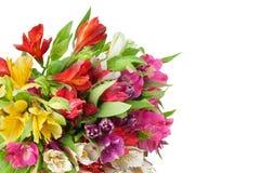 Mazzo rotondo di alstroemeria dei fiori multicolori dei gigli sul primo piano isolato fondo bianco fotografia stock libera da diritti
