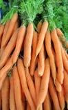 Mazzo rustico di carote fotografia stock