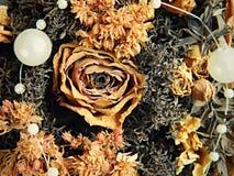 Mazzo secco delle rose Fotografia Stock Libera da Diritti
