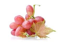 Mazzo sugoso di uva Immagini Stock