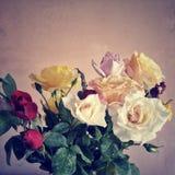 mazzo variopinto delle rose da fondo Fotografia Stock