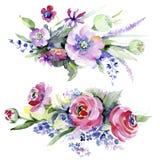 Mazzo variopinto Fiore botanico floreale Wildflower selvatico della foglia della molla isolato Fotografia Stock