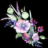 Mazzo variopinto Fiore botanico floreale Wildflower selvatico della foglia della molla isolato Immagini Stock Libere da Diritti