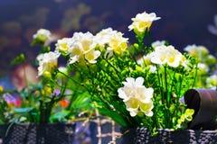 Mazzo vibrante del fiore del fondo giallo di alstroemeria Fotografia Stock