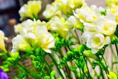 Mazzo vibrante del fiore del fondo giallo di alstroemeria Immagini Stock