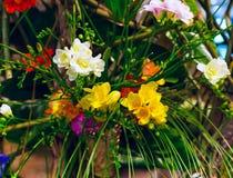 Mazzo vibrante del fiore del fondo multicolore di alstroemeria Fotografia Stock