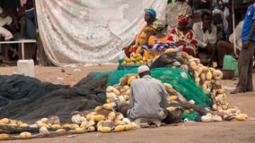 Mbour fish market Royalty Free Stock Photo