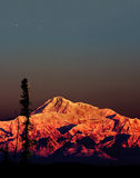 Mckinley morning. First light on mc kinley in denali national park USA . picture taken in the talkeetna area of alaska on the south side of mt Denali ,  alot of Royalty Free Stock Photography