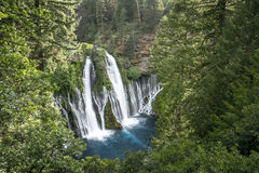 "McArthur†""Burney cai parque estadual memorável - Shasta County, Cal Fotografia de Stock Royalty Free"
