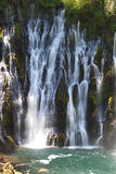 McArthur Burney Falls Royalty Free Stock Images