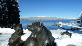 McCall, Idaho Payette Lake Bears stock photography