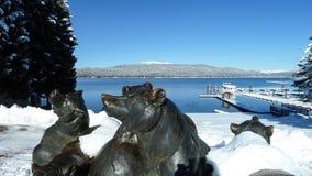 McCall Idaho Payette sjöbjörnar Arkivbild