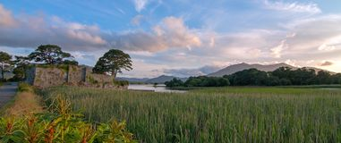 McCarthy Mor Irish castle ruins at Lough Leane in Killarney Ireland. McCarthy Mor Irish castle ruins on the Ring of Kerry at Lough Leane in Killarney Ireland stock photo