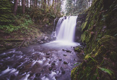 McDowell Falls, Oregon. McDowell Falls in just one of many waterfalls on this short hiking loop Stock Photography