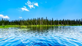 McGillivray Lake near Sun Peaks in BC, Canada. The clear water of McGillivray Lake, a high alpine lake near the alpine village of Sun Peaks in the Shuswap royalty free stock photo