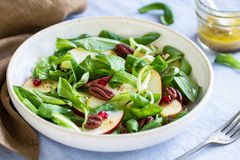Mâche with Apple and Pomegranate salad Royalty Free Stock Photography