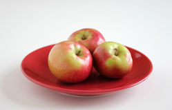 McIntosh Apples on Red Plate Royalty Free Stock Photo