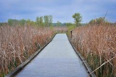McKay обозревают и след природы - St Charles, IL стоковое фото rf