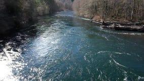 Река Орегон McKenzie сток-видео