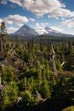 McKenzie-Durchlauf-Lava Fields Three Sisters Little-Bruder Mountains Stockbilder