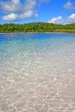 mckenzie för lake för Australien fraserö royaltyfri bild