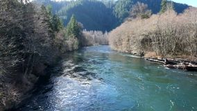 McKenzie River Oregon stock video