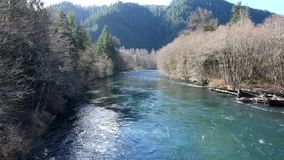 McKenzie River Oregon stock video footage