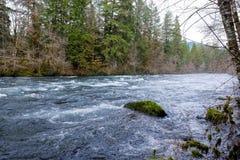 McKenzie River in Oregon Stock Photo
