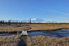 McKinley Bar Trail and Denali Mountain, Alaska Royalty Free Stock Image