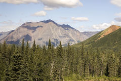 Scenic Trainride Through Alaska Wilderness. The McKinley Explorer train ride from Anchorage to Denali National Park affords remarkable access to breathtaking Royalty Free Stock Photo
