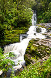 McLean Falls in the Catlins Royalty Free Stock Images
