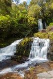 Mclean Falls, Catlins, New Zealand Stock Photos
