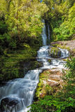 Mclean Falls, Catlins, New Zealand Royalty Free Stock Photography