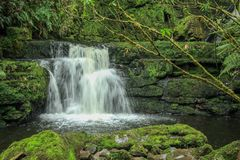 McLean Falls at The Catlins, South Island, New Zealand.  royalty free stock photography