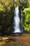 Mclean Falls closeup, Catlins, New Zealand Stock Image