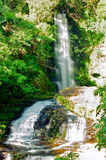 McLean falls, New Zealand royalty free stock images