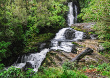 Mclean Falls in New Zealand. View of Mclean Falls on the Southern Scenic Route in New Zealand royalty free stock image