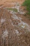 MCU vertical del camino fangoso de la selva con el charco grande visible Fotografía de archivo