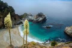 McWay Falls Royalty Free Stock Image
