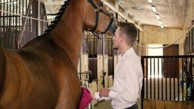 Mężczyzna czyści konia więdnie zbiory wideo