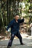 Mężczyzna sztuki taiji boks Obraz Royalty Free
