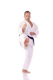 Karateka Obraz Stock