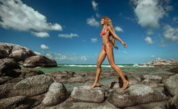 Mädchen auf tropischem Strand Stockbild